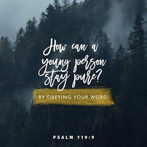 Psalm 119:9 Verse Image